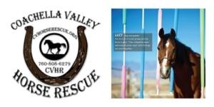 Coachella Horse Rescue